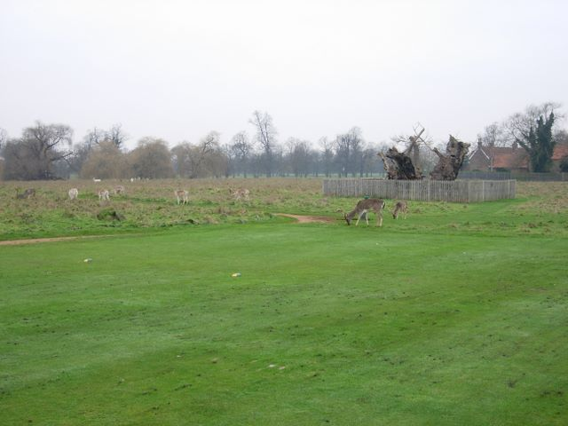 Home_Park_-_geograph.org.uk_-_305369